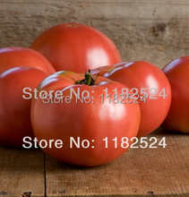 Buy 30 * Heirloom Martha Washington, f1, og Tomato Seeds Fruit Vegetables Seeds for $8.49 in AliExpress store