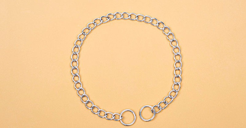 dog slip chain (2)