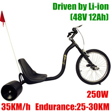 48V 12Ah Li-ion Electric Drift Trike,Max 35Km/h,150KG Load,250W Power Motor.(China (Mainland))