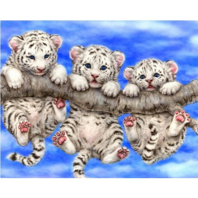 Full 3D Diy Diamond Animal Funny White Tigers Diamond Embroidery Kits Rhinestone Pasted Picture Home Decoration mosaic painting(China (Mainland))