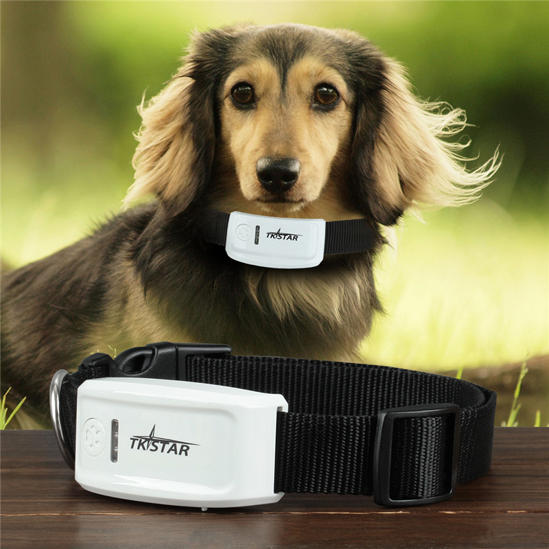 TK-STAR Smart Phones APP Tracking Real time GSM GPS Pet Tracker with Electronic Fence US Plug(China (Mainland))