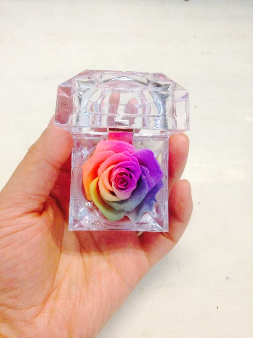 Free shipping,6pcs/lot,4.8*4.8cm,preserved flowers.Rainbow ring box rose,wedding gift,immortal artifical,Valentine's Day(China (Mainland))