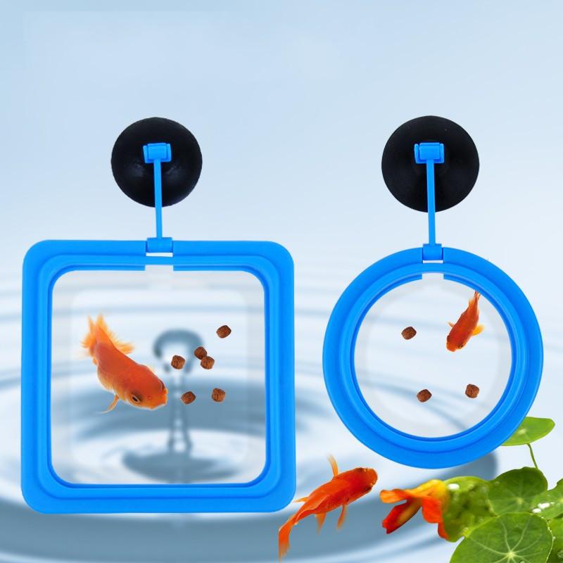 Творческий пластиковые практические корм для рыб круглую
