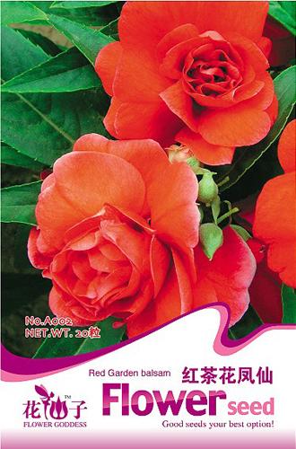 20 Red Garden Balsam Seeds DIY Home Garden Plant Emit bursts of fragrance refreshing A002(China (Mainland))