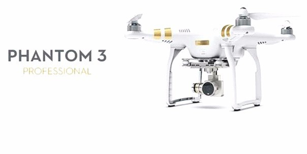 2pcs/lot DJI Phantom 3 accessories golden Phantom 1/2/3 universal housing Sticker