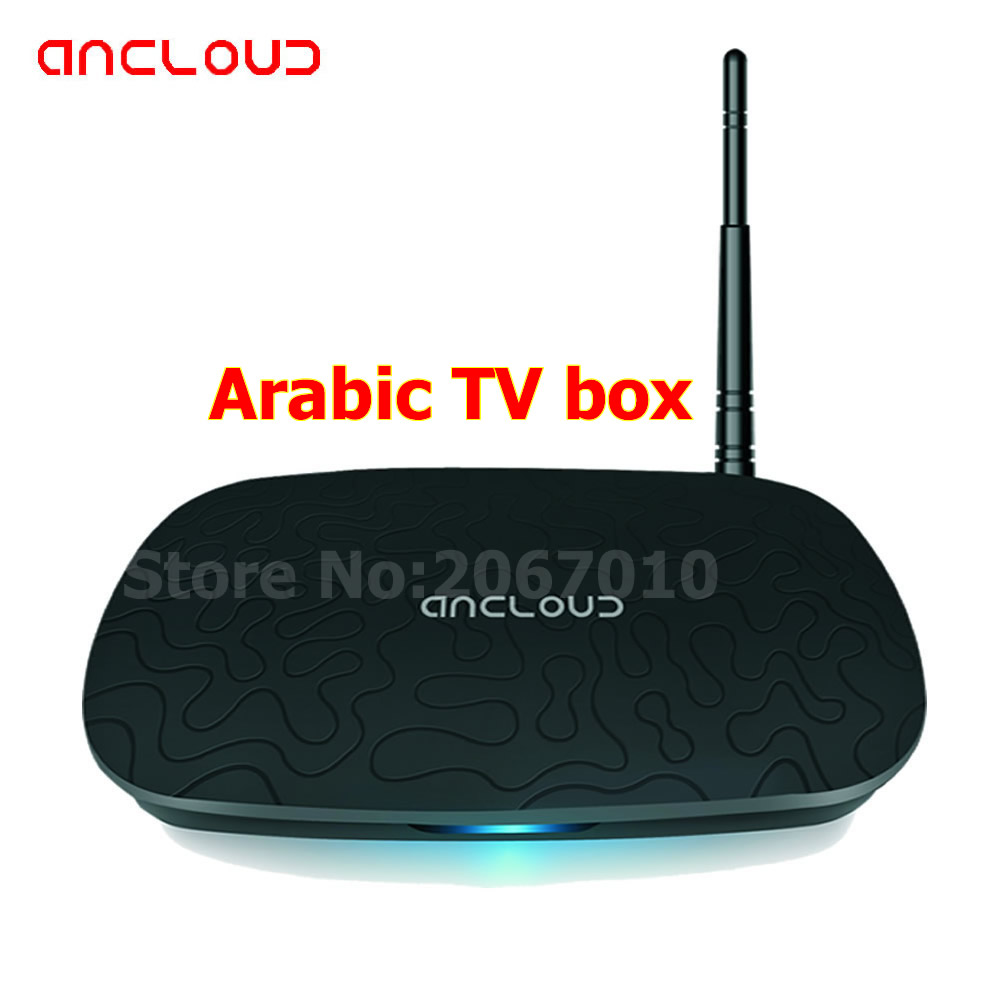 Arabic TV BOX >450 Africa/Arabic/MiddleEast/World TV channels,multiple Apps all in One,multimedia Flies Play by Local Player(China (Mainland))