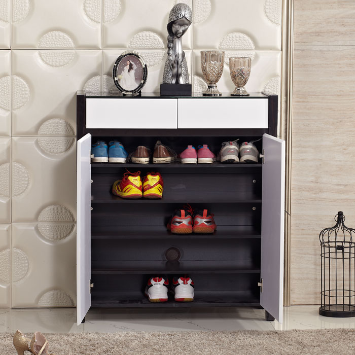Economical and practical two-door shoe cabinet entrance foyer two dust Specials 709 #<br>