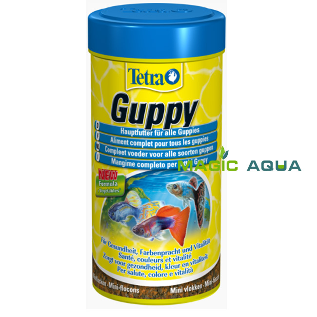 mini jardim aquatico : mini jardim aquatico:Tropical Guppy Fish Food Flakes