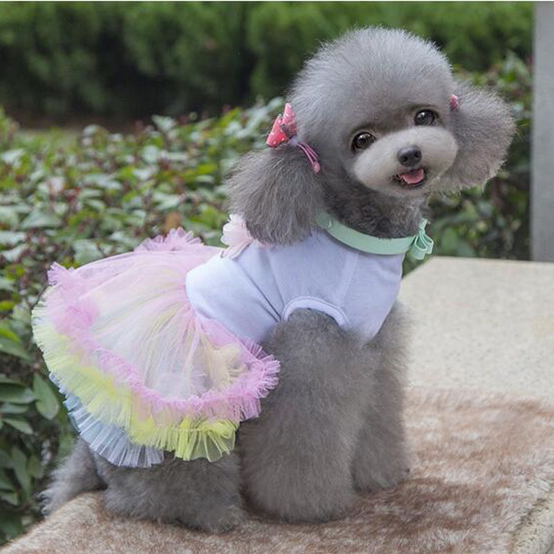 2016 Factory directly Selling Cloth Dog White Pet Clothes Kawaii Teddy Bear Coat Clothing Colorful Cake Shape Small Dogs Clothes(China (Mainland))