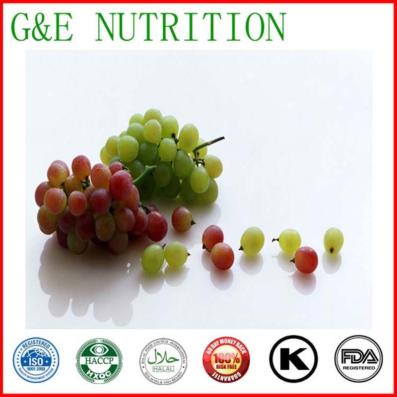 Natural Grape seed extract with OPC,Grape Seed extract powder,grape seed extract  4:1 800g