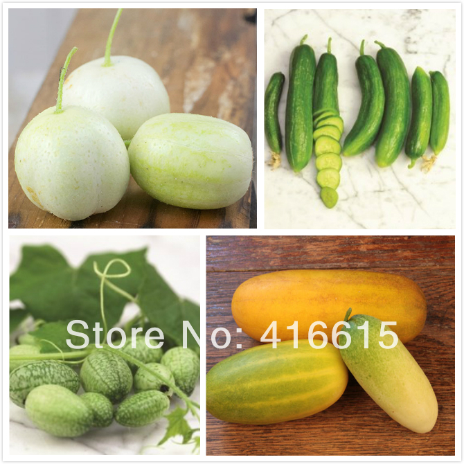 mobile home express nc with Varieties Cucumber on 32265638544 besides 32472340531 likewise Raleigh additionally 2492284437 besides 612510540.