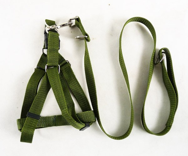 Pet's world cool dog harness Nice army green harness dog leash, dog lead2.5cm width(China (Mainland))