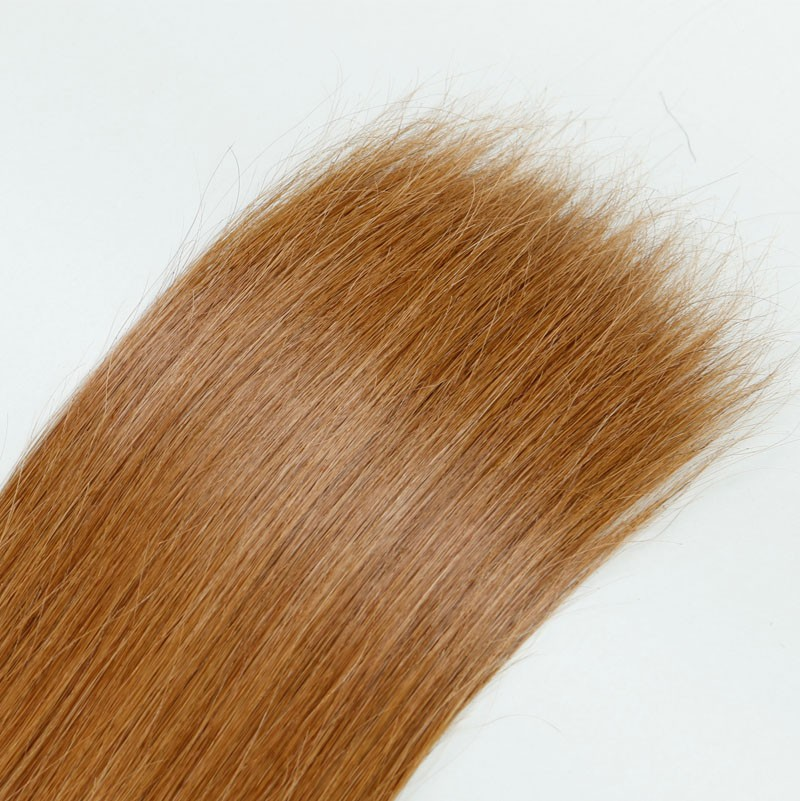Sleek 10A Brazilian Virgin Hair Maiden Bulk Hair Human Hair 2 PCS/Lot Color DB2/27 Silky Straight Hair