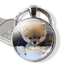 Cão jóias shiba inu cão bonito imagem chaveiro de vidro cabochão pingente anel de metal chaveiro saco pingente cão amante presente(China)