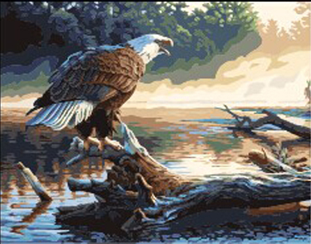 Frameless Arcylic Paint Picture Wall Decor DIY Oil Painting On Canvas Free Shipping 40X50cm Hawk Painting By Numbers(China (Mainland))
