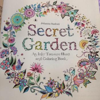 Электронная секретный сад в Inky охота за сокровищами и книжка-раскраска для детей взрослых снять стресс убить время напечатаны каракули вторжение