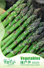 Vegetable seeds asparagus soft 2/ bag flower pots planters Original packaging Home Garden Bonsai - eLife Co.,Ltd store