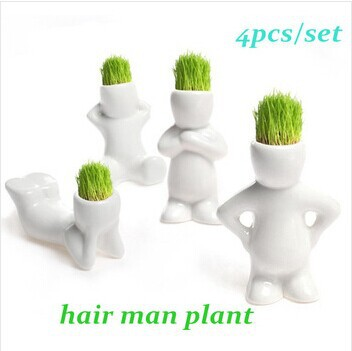 4pcs set Home Decoration Mini DIY White Man Magic Grass Planting Creative Lovely Gifts Plant Hair