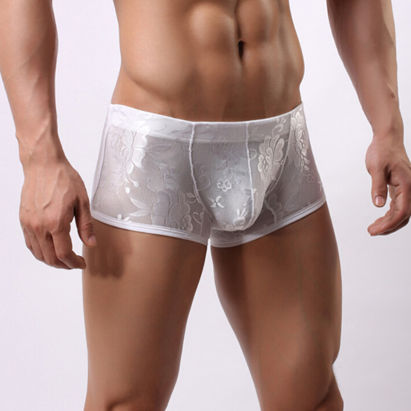 M XL New Men Underwear Pants Transparent Lace Sexy Low Waist Breathable Briefs