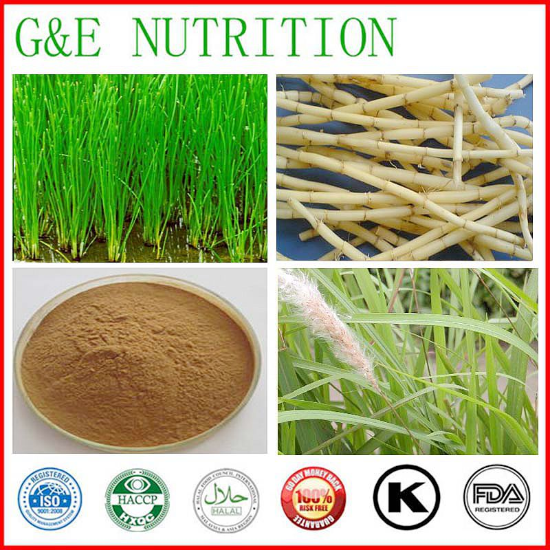 500g Lalang Grass Rhizome Extract/Plant Extract 100% Natural <br><br>Aliexpress