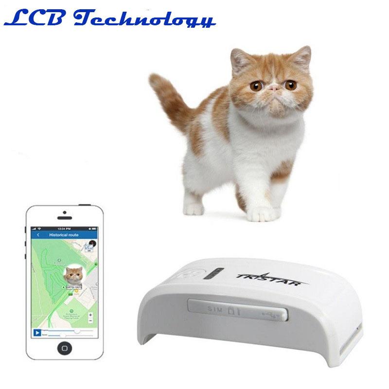 Купить Супер Мини TK909 LK909 Трекер Длительным Временем ожидания Собака Кошка Pet Персональный GPS Трекер/IOS/Andriod Приложение Бесплатно веб-сайт Услуги