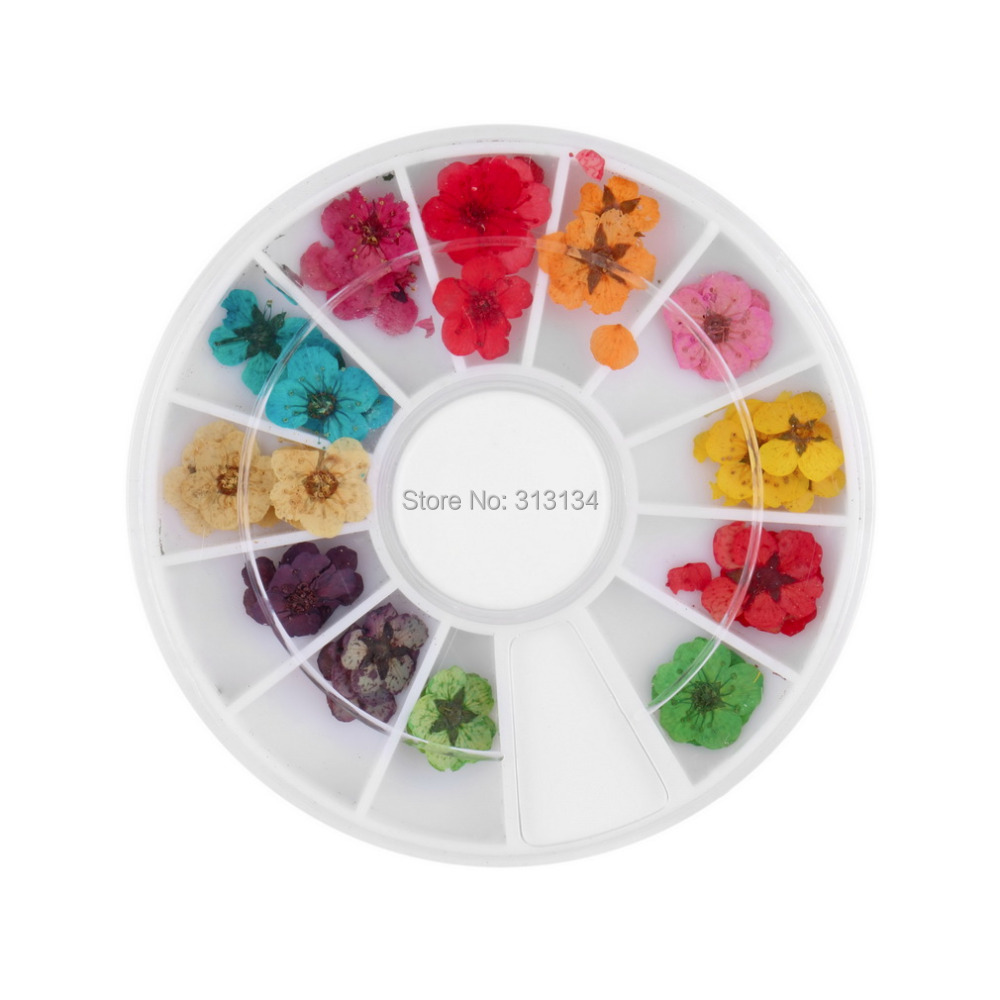 12 Color 3d flower nail art Dried Dry Flower Nail Art Wheel Decoration Manicure Tips nail art product nail art wheel(China (Mainland))