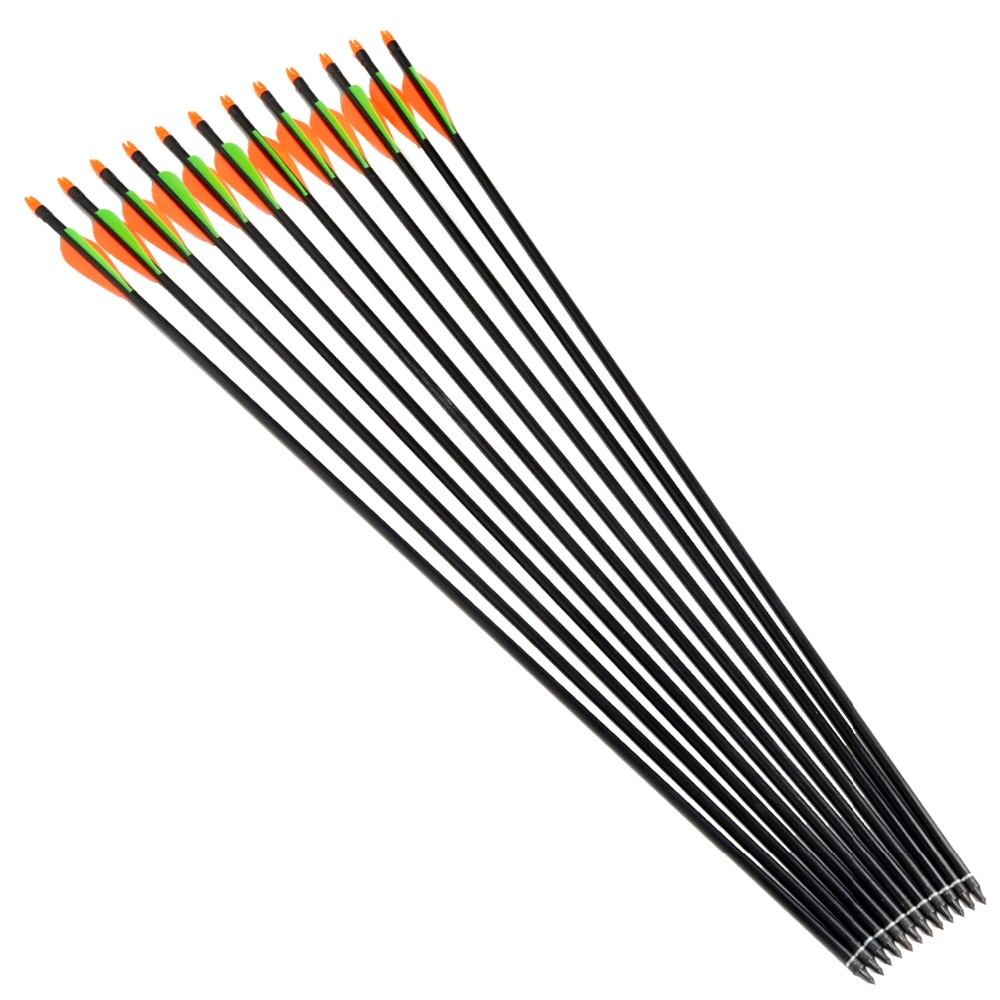 12pcs 31 Inch Long Spine 600 Target Practice Steel Point Archery Fiberglass Arrows with for Hunting