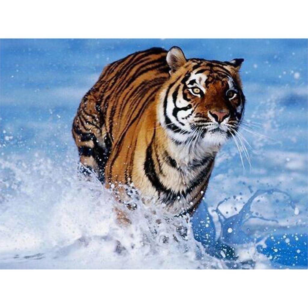 running tiger Diamond embroidery Paintings Rhinestone Pasted 3D Diamond painting Animal diamond mosaic 80x60cm SP-044 wall art