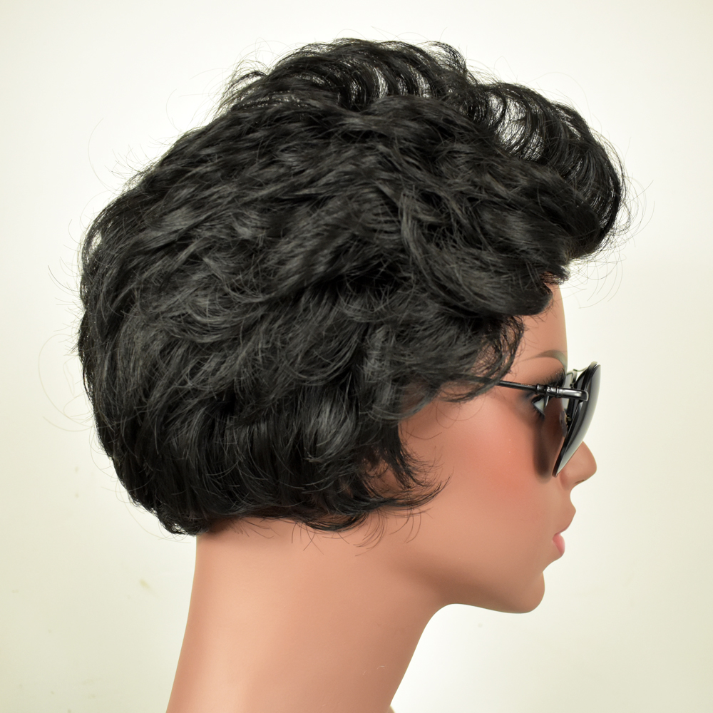 Female Short Curly Synthetic Wigs for Black Women Heat Resistant False Black Hair Natural Cosplay + free wig cap sw8738