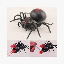 Hot Sale 1pcs Diy Assembly brine powered car Series Brine Power Spider toy black plastic brinquedos(China (Mainland))