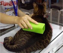 Products for cats and dogs pet hair cleanup suction hair tools hair removal brush Easy to clean up animals hair