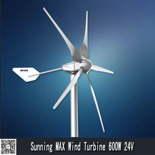 10% off permanent magnet generator 600W small wind turbine