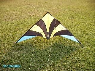 180cm stunt kite/power kite/snow kite(China (Mainland))