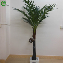 Buy Trees seeds Areca Seeds bonsai tree 100% true seed in-kind shooting home garden plant 1 pcs N016 for $1.16 in AliExpress store