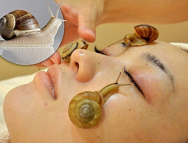 1KG Pure Snail Slime Mucus Extract 1000ml Same As Snail Crawling On The Face Treatment Beauty