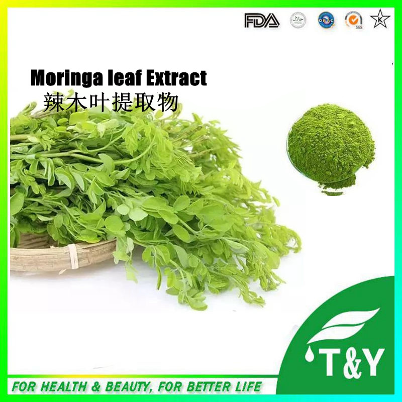 the effectiveness of malunggay extract