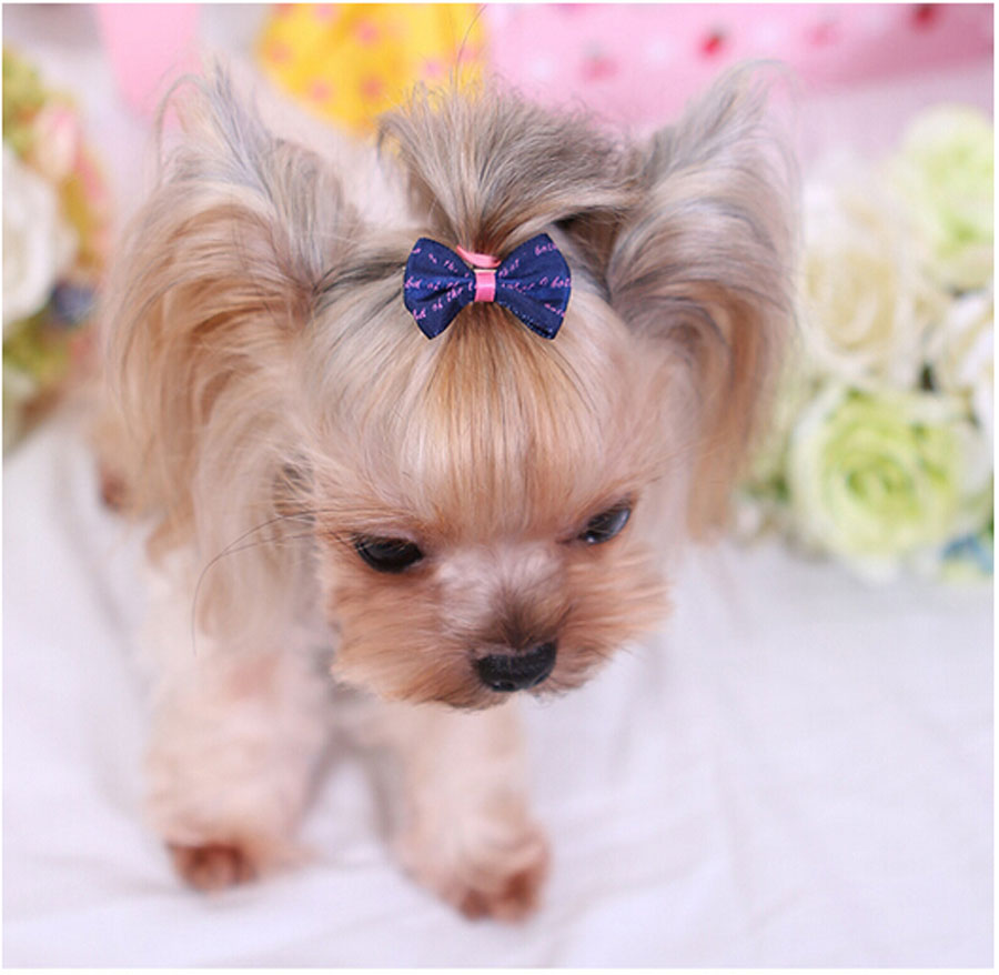 Candy Color Dog Bows Pet Hair Grooming Accessories Decorations Handmade Teddy Yorkshire Chihuahua Boutique Hair Clips(China (Mainland))