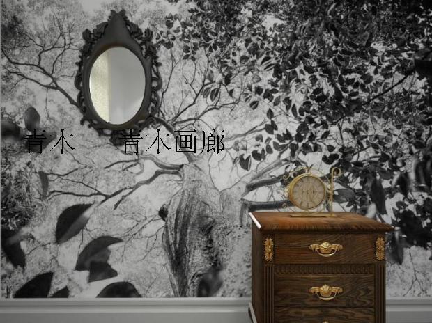 Showroom tv promotion shop for promotional showroom tv on for Mural hitam putih