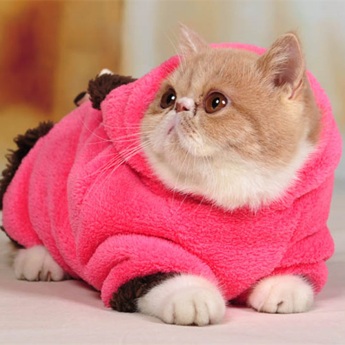 2 Legs Cat Clothes, Clothes to Keep Warm, Pet Cat Clothes Autumn and Winter Coat, Coral Fleece Pullover, Free Shipping CM-PC0003(China (Mainland))