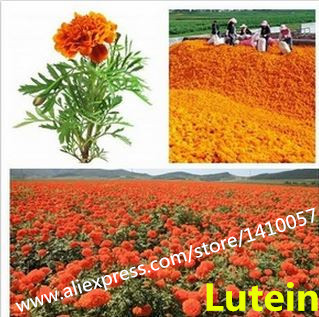 Natural  Lutein 90%  Natural Food Grade Colorant Powder Natural Marigold Flower Extract Food Additives<br><br>Aliexpress