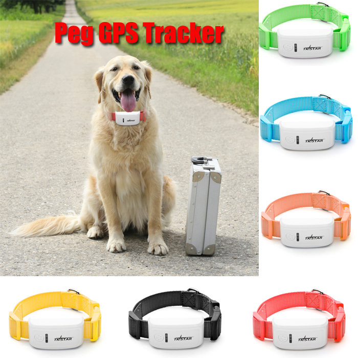 Best Gps System For Dogs