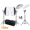 Photography Studio Soft Box Flash Lighting Kits 750ws Storbe Flash Light Softbox 2 Umbrella 2 Light