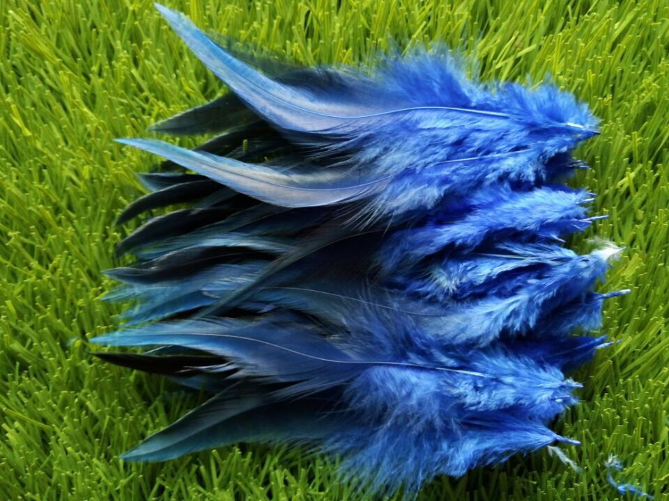 """New! Royal blue 50 pc quality pheasant feather, 4-6 """"/ 10-15cm DIY decoration accessories, weddings, family"""