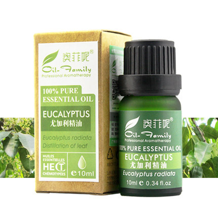 Oil Family The treatment of burns Beriberi Antivirus / cure a cold / sterilization brand pure eucalyptus essential oil 10ml(China (Mainland))