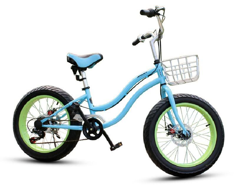 cycling bmx/ciclismo Montaa/bicicleta de montananana de la bicicleta/20 bike/bicycle chopper/bicicleta carretera/btt/fat bike(China (Mainland))