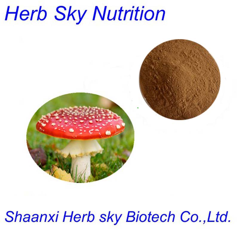 ISO, HACCP Certified Amanita Muscaria Extract Powder with Polysaccharide 1000g/lot(China (Mainland))