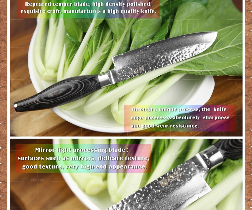 "Buy XINZUO 5"" inch santoku knife 73 layers Damascus kitchen fruit knife japanese VG10 chef knife Color wood handle free shipping cheap"