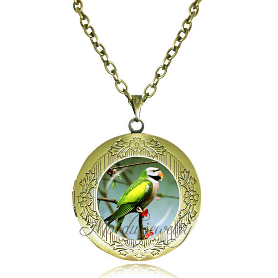 Long chain Photo frame locket pendant necklace parrot art picture pendants animal glass cabochon necklaces women jewellery(China (Mainland))