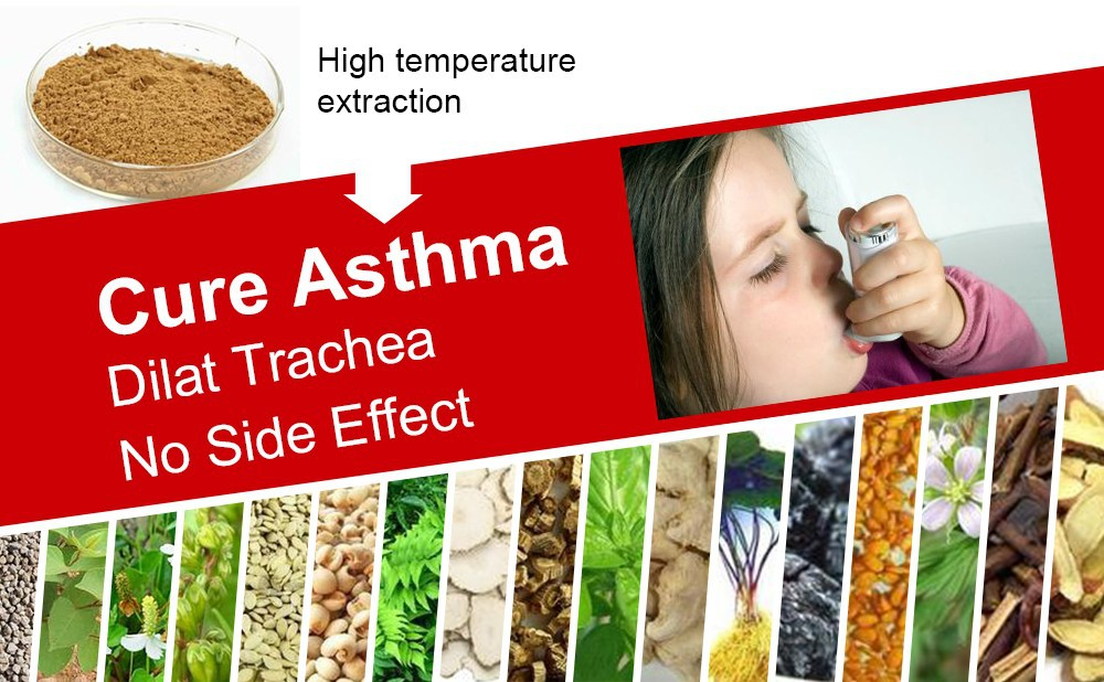 Cure Asthma Disease Medicines of Organic Herbs Extraction, Nourish Lung and Bronchus, Repair Asthma Damage to the Body