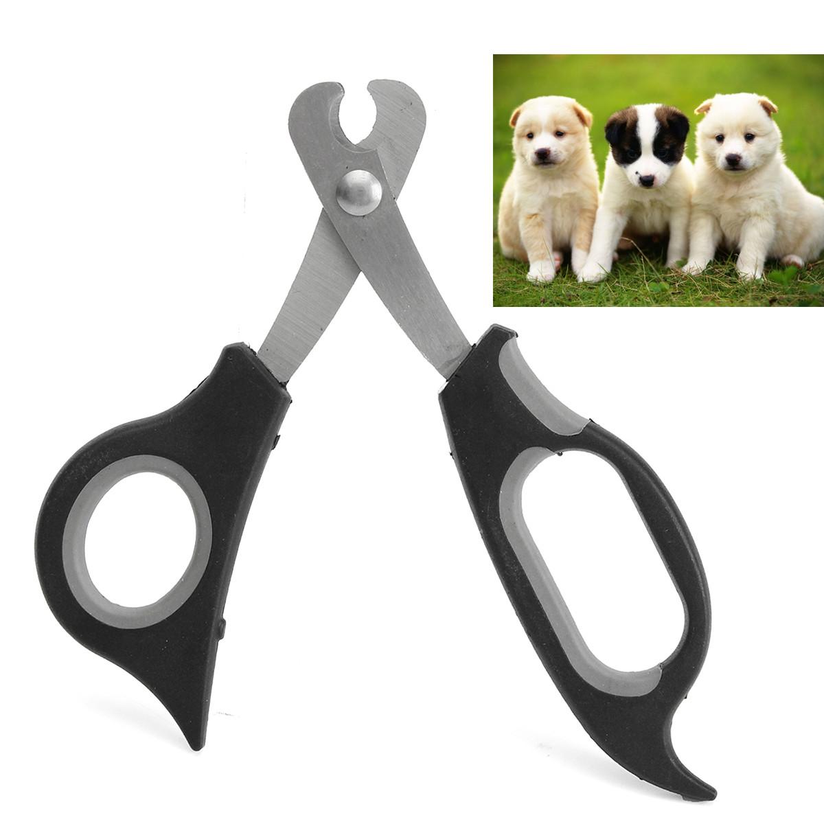 Ножницы для стрижки ногтей у кошек